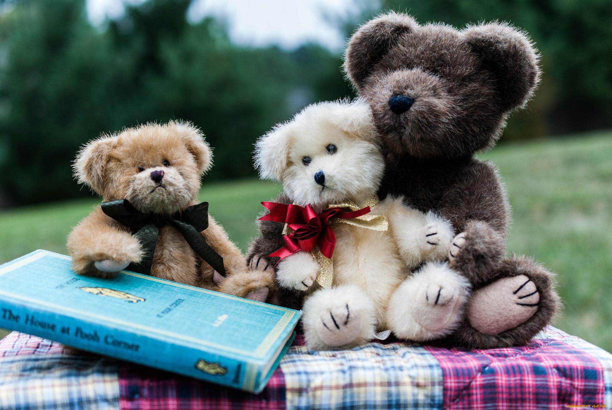 Игрушки и книги картинки